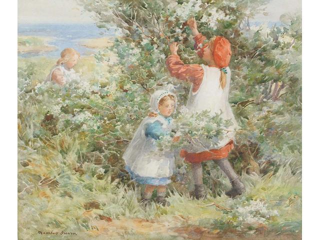 William Marshall Brown (British, 1863-1936) Harvesting the Elderflowers 30 x 35 cm.
