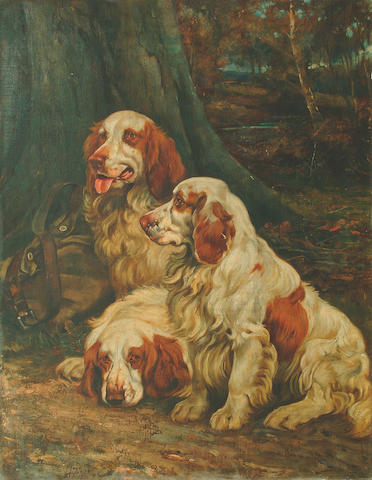 Wright Barker R.B.A. (1864-1941) Three Clumber Spaniels resting in a woodland landscape 89.5 69.5cm