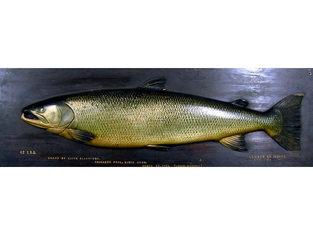 A finely carved and painted half block Salmon,