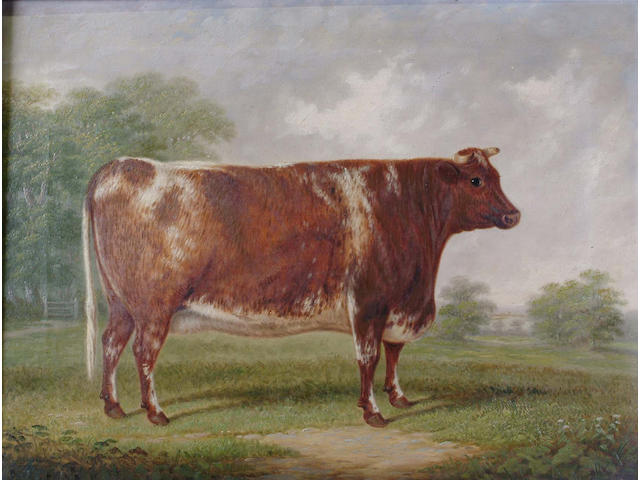 E Brown Portrait of a cow in a landscape, 49.5 x 64.5cm