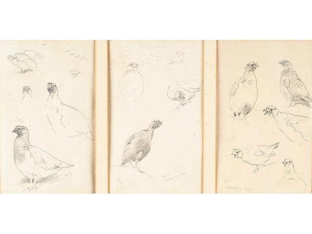 Archibald Thorburn (British, 1860-1935) Grouse; Plovers; Shoveler; Shelduck; Eiders; Scaup; Tufted duck; Pochard; Curlew; 16.5 x 10 cm, (15, within 5 frames).