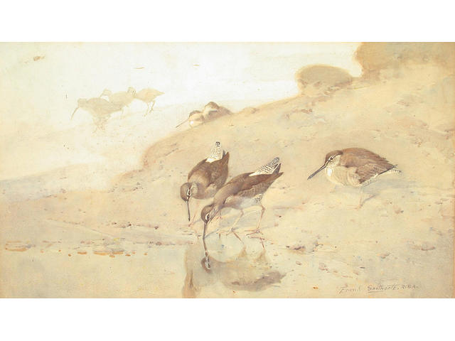 Frank Southgate (British, 1872-1916) Waders looking for food 28 x 49.5 cm.