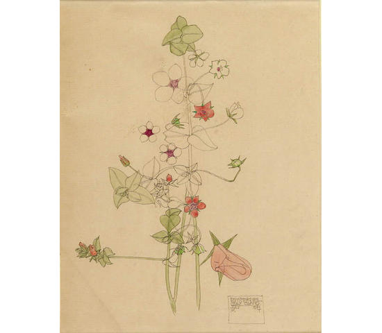 "Charles Rennie Mackintosh (1868-1928) ""Pimpernel, Holy Island"", 22.5cm x 17.5cm"