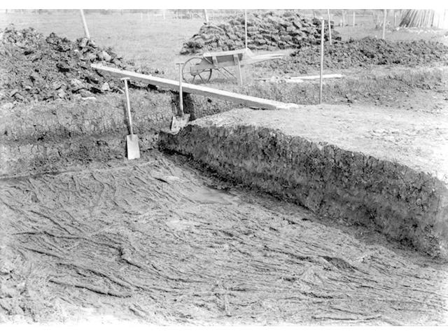 GLASTONBURY LAKE VILLAGES, ARCHAEOLOGY Album containing approximately 200 photographs of a Glastonbury lake village archaeological dig