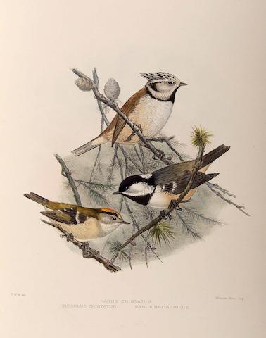 British birds (2 Vols) WYATT (Claude W.) British Birds