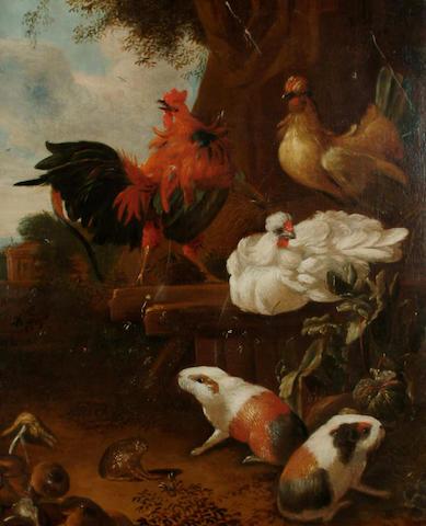 Circle of Jan van Oolen A cockerel, hens, guinea pigs and a toad in a garden, 80 x 66.5cm
