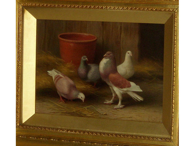 Edgar Hunt (1876-1955) British Pigeons by a terracotta potsigned and dated 'E. Hunt 1913', oil on canvas, 18 x 25.5cm.  see illustration