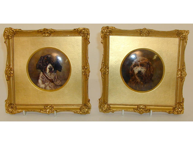 A pair of Royal Worcester circular plaques painted with dogs by Horace Price,
