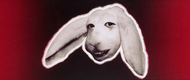 Stephen Murphy (British, b.1962) Self-Portrait as a Rabbit 40 x 90cm.