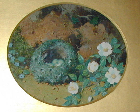William Cruickshank (1848-1922) British Bird's nest and white dog rose against a bank; bird's nest a