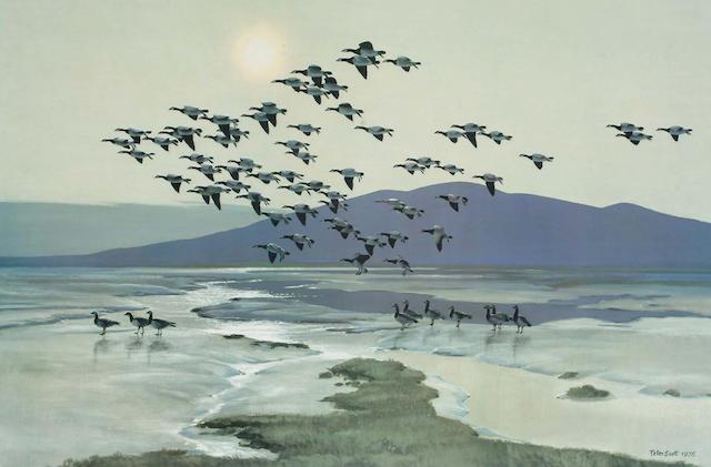 After Sir Peter Markham Scott Barnacles coming off Merse at Caerlaverock, (image) 35.3 x 53.8cm