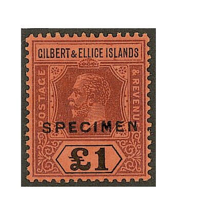 """Gilbert and Ellice Islands: 1912-24 MCA £1 purple and black/red overprinted """"SPECIMEN"""" with gum, fine and fresh. (416)"""