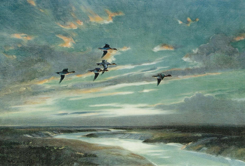 After Sir Peter Markham Scott  Widgeon in flight over a creek; along with a companion, (image) 35.5 x 53.1cm.; 35.3 x 53.3mm. (2)