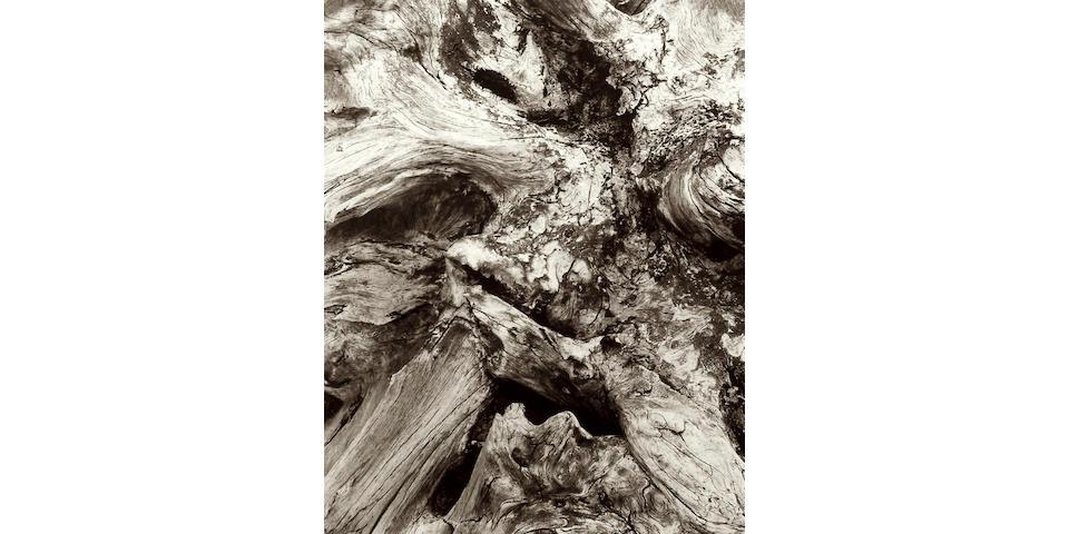 PAUL STRAND Driftwood, 1926-1928