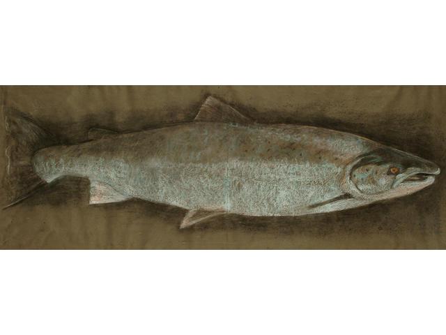 English school circa 1900, Fish portrait, 41.5 x 110 cm.