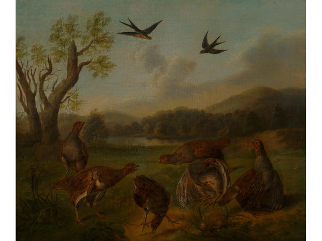 Stephen Elmer (1717-1796) 'A flock of partridge with a lake and swallows' 37 x 45cm (14 1/2 x 17 3/4in)