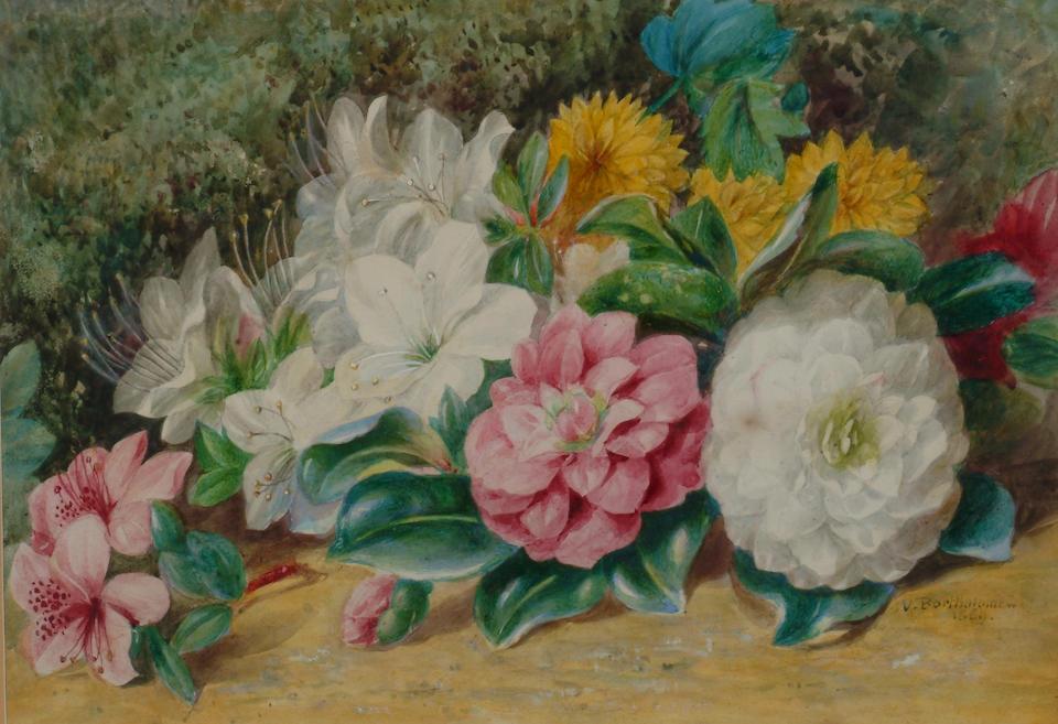 Valentine Bartholomew (1799-1879) 'Camelias and azaleas' 24 x 34cm