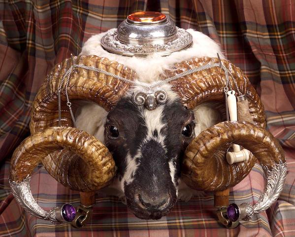 An impressive Victorian ram's head Table Snuff Mull,  by Edinburgh 1860,