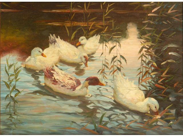 Walter Simpson Ducks 20 x 26cm