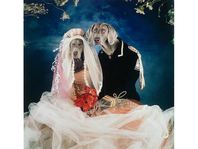 William Wegman (b.1943) Love 89 x 89 cm. (35 x 35 in.) (sheet)