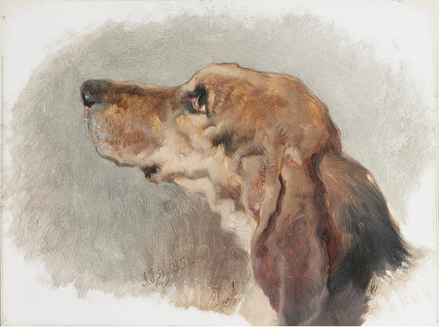 John Frederick Herring, Snr. (British 1795-1865)  Study of the head of a hound 8 1/2 x 11 3/4 in. (2