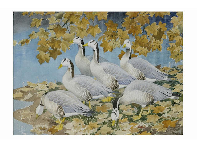 Charles Frederick Tunnicliffe (1901 - 1975) 'Autumn in Westminster' - bar-headed geese by a lake, 30 x 41cm.