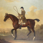 James Seymour (London 1702-1752) A bay racehorse with jockey up 92 x 91.2 cm. (36 1/8 x 35 7/8 in.)