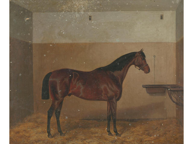 Circle of John Alfred Wheeler (1821-1903) ''The Doctor' - a bay horse in a loose box' 50 x 60cm