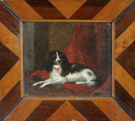 English School c. 1840 A Blenheim King Charles Spaniel in an interior 2 3/4 x 3 1/4 in. (7 x 8 cm.) in a period marquetry frame.