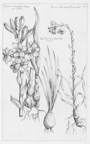 SWEERT (EMANUEL) Florilegium... tractans de variis floribus, et aliis indicis plantis ad vivum delineatum, 2 parts in one vol.