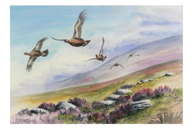 Simon Gudgeon (born 1958) Grouse in flight, 65 x 95cm.