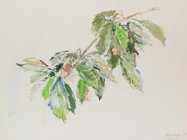 Oscar Kokoschka (1886-1980) Kirschenzweig 47.6 x 63 cm. (18 3/4 x 24 3/4 in.)