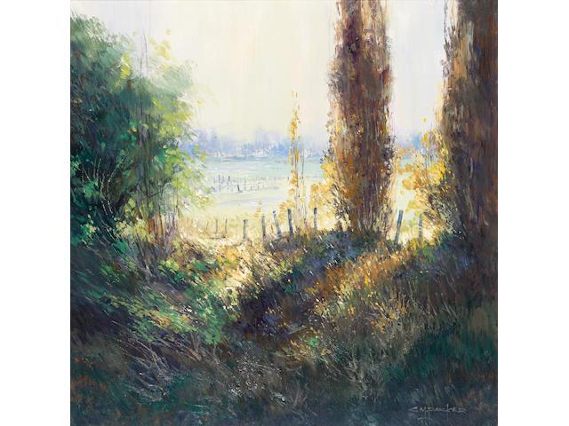 Colleen M. Parker (Australian, 1946- ), 'Through autumn trees Bathurst', 61 x 61cm.