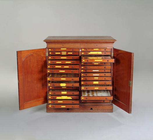 A Victorian mahogany collectors cabinet