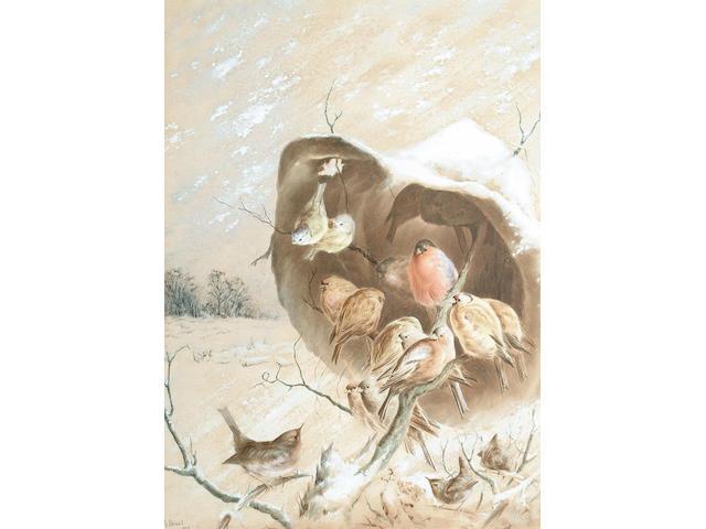 Harry Bright (British, 1846-1895), Garden birds taking refuge from the snow, 42.7 x 31 cm.