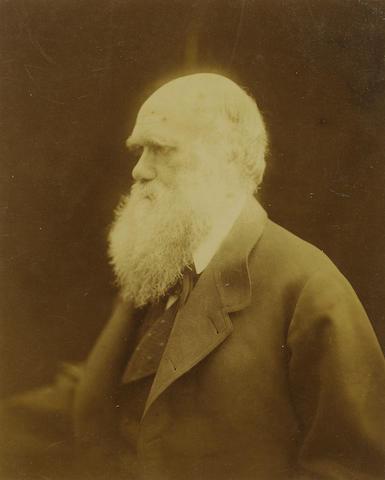 DARWIN, CHARLES (1809-1882, naturalist)  PORTRAIT BY JULIA MARGARET CAMERON (1815-1879),<br/>