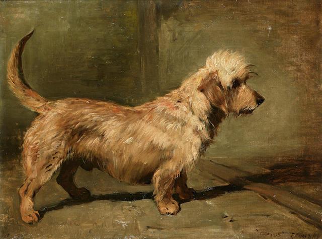 John Emms (British 1843-1912) Portrait of the Dandie Dinmont 'Ch. Edenside' 17 3/4 x 24 in. (45 x 61 cm.)