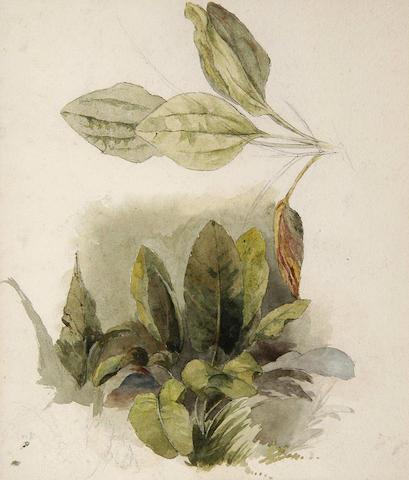 Peter de Wint O.W.S.(1784-1849) 20.5 x 17.5cm (8 x 7in).