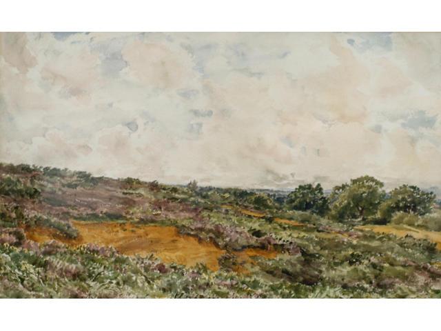 Thomas Collier (1840-1891) 'Fittleworth Common, Sussex', 31 x 50cm