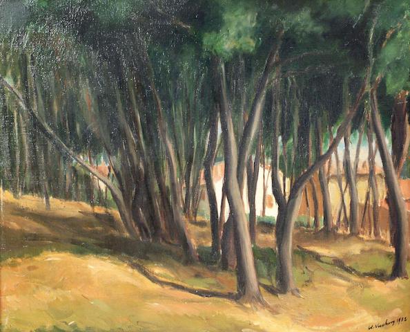 South African School (20th century) 'Woodland scene' 53 x 63cm
