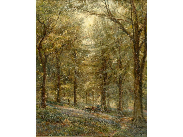 "Oil M Royle ""Bluebell Wood"""