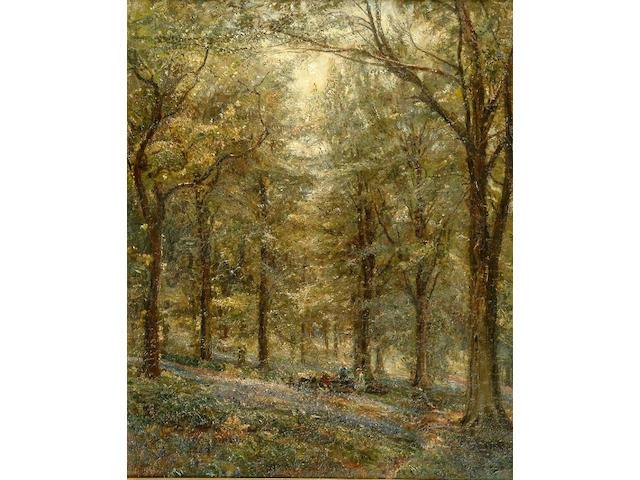 Herbert F. Royle (1870-1958) Bluebell wood near Bolton Abbey 59 x 50cm.