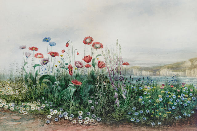 Andrew Nicholl R.H.A. (1804-1886) Poppies and wild flowers with Dunluce Castle beyond, County Antrim 33 x 49.5 cm. (13 x 19 1/2 in.)