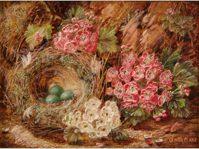 Oliver Clare (1853 - 1927), A matched pair of still life studies; one depicting a bird's nest and blossoms on a mossy bank, the other of grapes, a peach and other fruit, 14 x 19cm. (in matching giltwood frames)