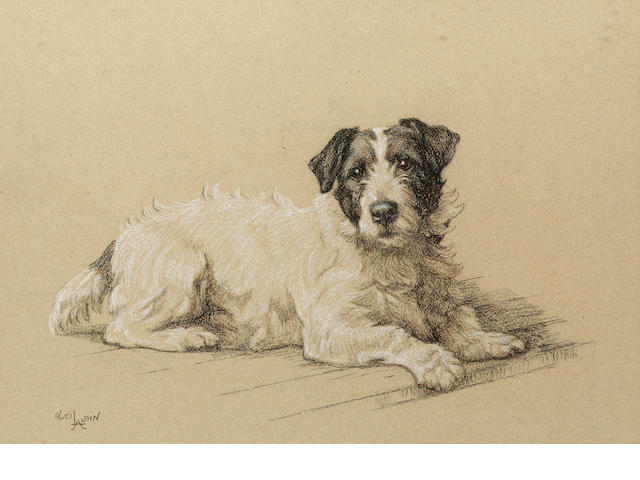 Cecil Charles Windsor Aldin RBA (British 1870-1935) Portrait of a Terrier 13 x 18 1/2 (33 x 47 cm.)