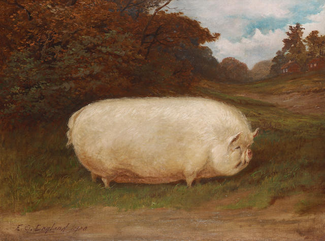 E.S. England (British, 19th./20th.Century) A prize middle white sow in a landscape 45.7 x 61cm. (18