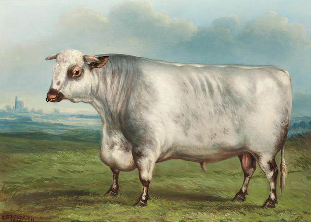 F. Stoward (British 19th century) A prize shorthorn bull in a landscape 48.2 x 66 cm. (19 x 26 in.)