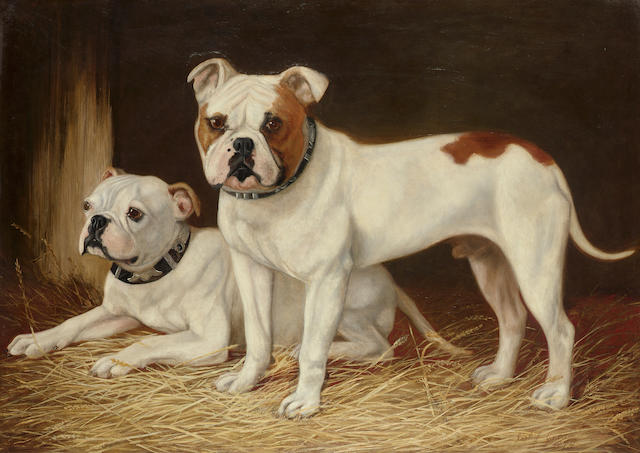 Josh J. Gibson (British 19th century) Two bulldogs on straw 71.1 x 100.3 cm. (28 x 39 1/2 in.)
