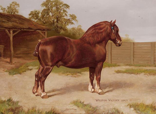 Charles Edwin Baldock (British b.1876) The dark red Suffolk horse 'Western Victory' 45.7 x 61 cm. (18 x 24 in.)