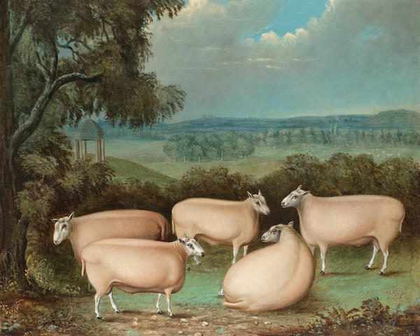 J.B. Wood (British, 19th. Century) Five prize Leicester rams in Ingestre Park 63.5 x 79.4cm. (25 x 3
